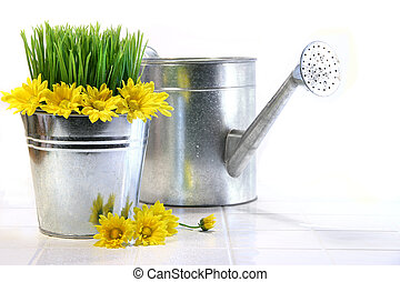 Garden pot with grass, daisies and watering can
