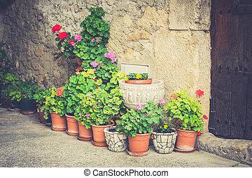 Garden pots with plants