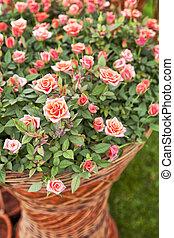 Garden rose bouqet