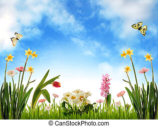 Spring flowers, grass and butterflies, photo illustration