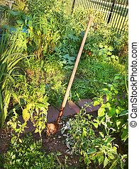 Garden Shovel In Garden