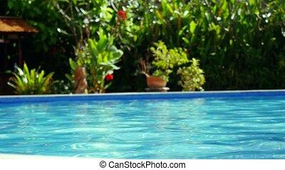 garden., soleil, entouré, reflété, privé, luxe, paradis, piscine, natation