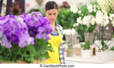 garden spring time concept, woman