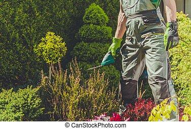 Garden Spring Trimming Job