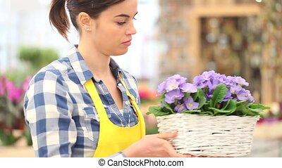 garden springtime concept, woman florist working with white...