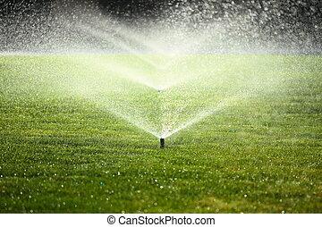 garden sprinkler on the green lawn - garden sprinkler on a...
