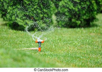 Garden sprinkler working