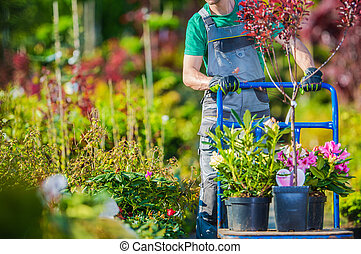 Garden Store Shopping with Large Cart
