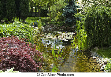 garden., summertime idő, csendes