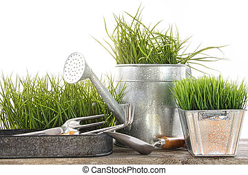 Garden tools and watering can with grass
