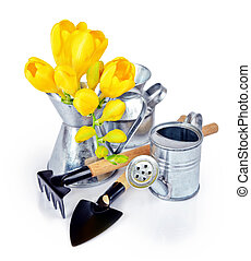 Garden tools and yellow freesia flowers on a white ...