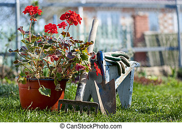garden tools - scoop, rake, gloves and a flower in a pot in ...