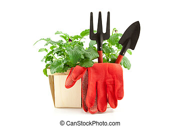 Garden tools with plants on white background