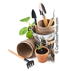 Garden tools with seedlings vegetable. Isolated on white ...