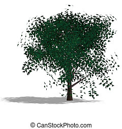 garden tree - rendering of a tree with shadow and lipping...