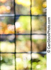 Garden view through window frame