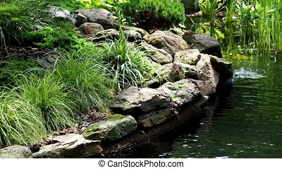 Garden waterfall. Garden pond with water flowers. Beautiful pond in a backyard surrounded with stone during.