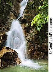 Garden waterfalls.