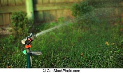 Watering garden.