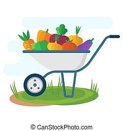 garden wheelbarrow with vegetables