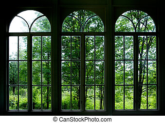 Large arched windows looking out into a garden or forest