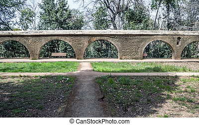 Garden with a bridge