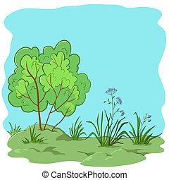 Garden with a bush - nature landscape, garden with a grass, ...