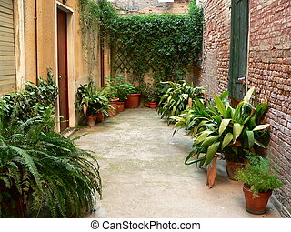 garden with pot plants