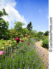 Garden with roses - Beautiful garden with blooming roses,...