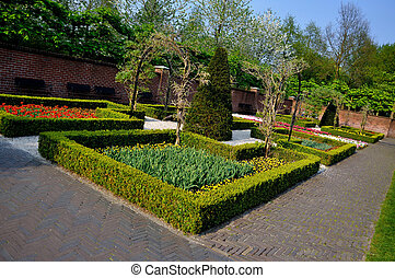 Garden with small bushes in Keukenhof park in Holland