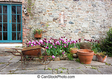 Garden with tulips and orange flower pots and a wheelbarrow