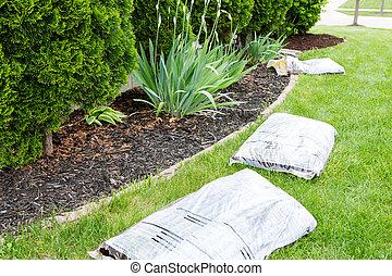 Garden work in spring mulching the plants