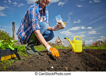Garden worker - Image of female farmer sowing seed in the...