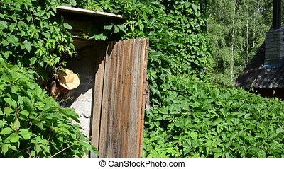 gardener basement food - Pretty gardener woman carry out...