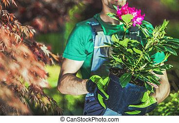 Gardener Buying Flowering Plant in a Pot