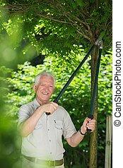 Gardener cutting branch