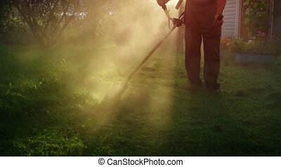 Early morning sunshine illuminates a cloud of dust kicked up by a gardener's string trimmer as he cuts the grass, UltraHD 4k video with sound.