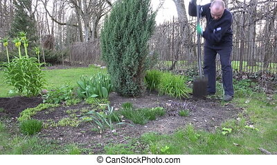 gardener dig weed bed