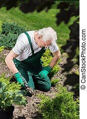 Gardener digging in the ground