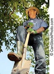 Gardener digging with spade