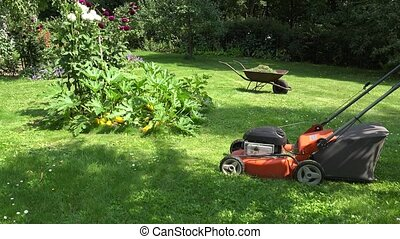 gardener girl in flip-flop shoes mow lawn with grass cutter...