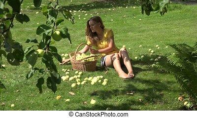 Gardener girl sitting on ground and gathering windfall ripe...
