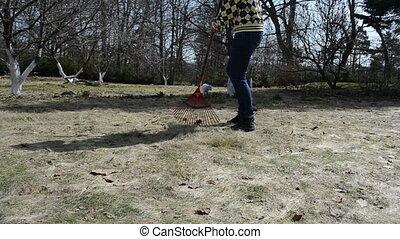 gardener grass rake cat