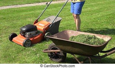 gardener guy unload grass from lawn mower bag into barrow. 4K