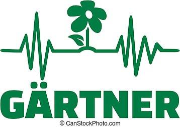 Gardener heartbeat line with male job title german