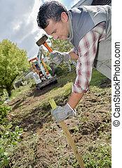 gardener hitting stake