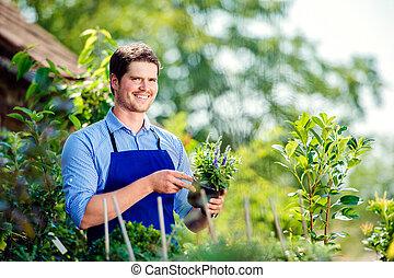 Gardener holding plant, in his garden, green sunny nature