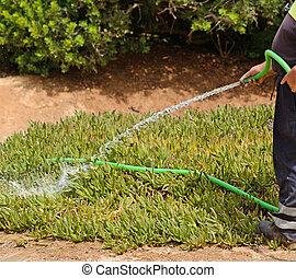 Gardener holding sprinkler and watering garden