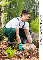 Gardener lifting up a stone - Young asian gardener lifting...