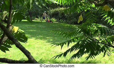gardener man with flip-flop shoes mow lawn. View through trees. 4K